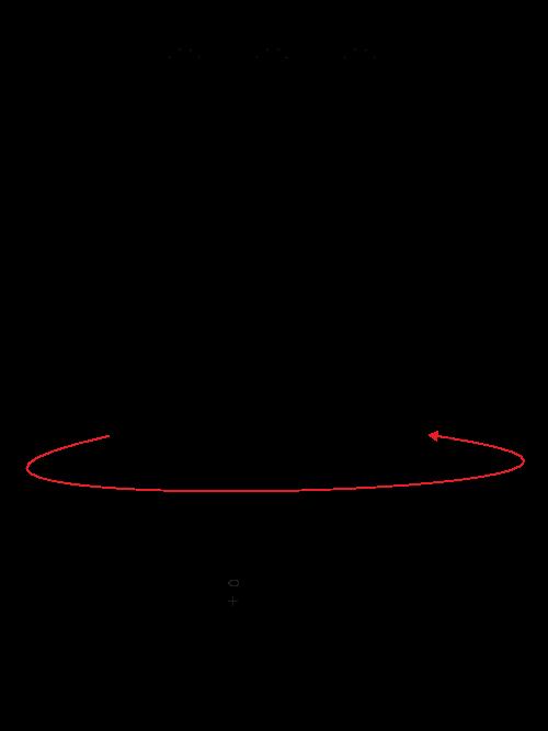graf-saia-1